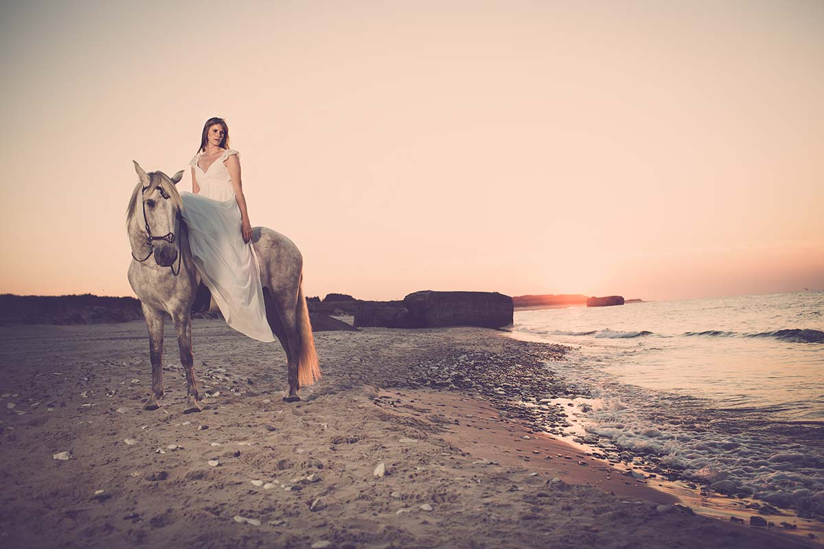 portrætfoto på hest